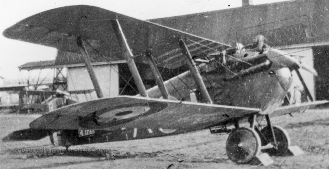 Sopwith 5F1 Dolphin C8122 A Of 79 Squadron In 1919 0383